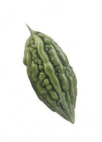 フタバ種苗 緑せんぼん 1L
