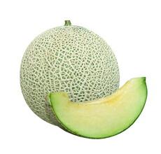 高品質 肥大性に優れ 食味のよい這作りアールス たね 丸種 メロン アウトレット 種子 カスタネット 小袋