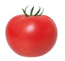 休み 着果性抜群の葉カビ病抵抗性極早生種 丸種 トマト 1000粒 ギフト 冠美