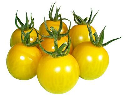 感激の食感 うす皮イエローミニトマト きら~ず 新着セール ナント種苗 トマト 小袋 うす皮ミニトマト スーパーセール