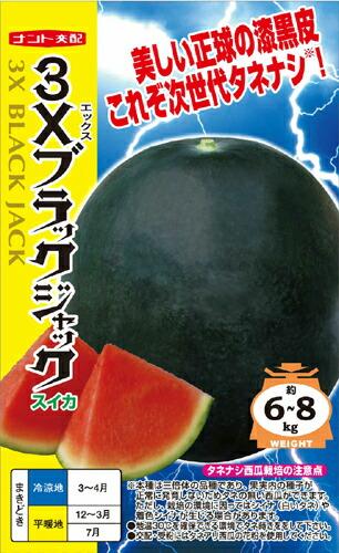 ナント種苗 スイカ 3Xブラックジャック(シードレス西瓜)100粒