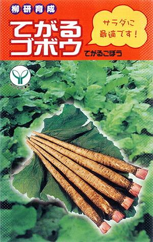 てがる 新作製品、世界最高品質人気! に作れる風味抜群の柔らかい短根ゴボウ ナント種苗 ゴボウ 20ml お買得