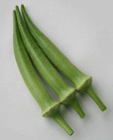 トキタ種苗 オクラ レディーフィンガー 1L