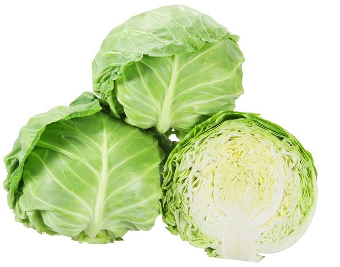 高温期 授与 低温期の 肥大性 定番キャンバス 食味に優れる たね キャベツ 大和農園 ボールランナー 20ml