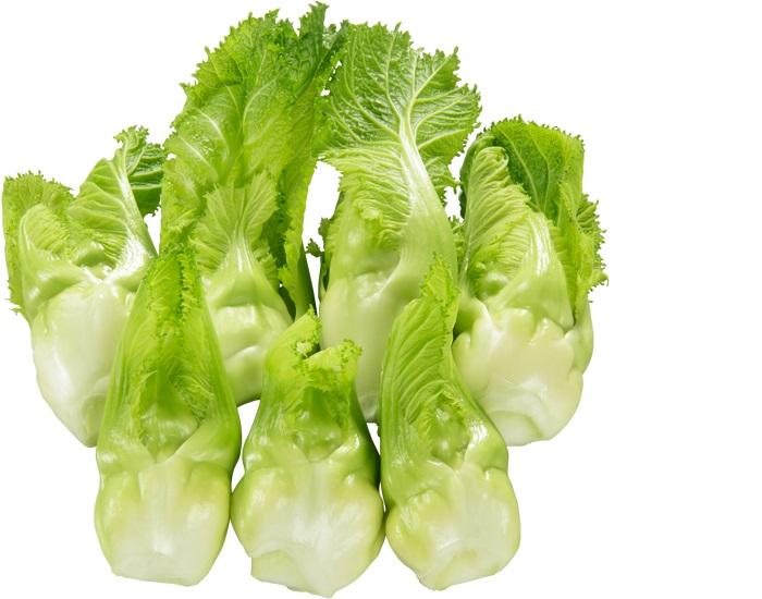 春を知らせる新顔野菜 今までにない食感 たね 価格 大和農園 シュクライ 超激安特価 しゅくらい Sコート 祝蕾 1000粒