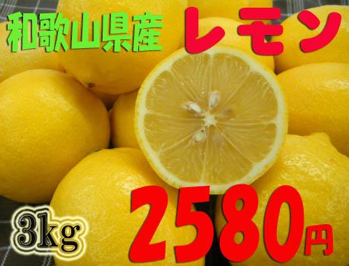紀州和歌山♪ 国産レモン 3kg 2,580円       【送料無料・一部地域除く】