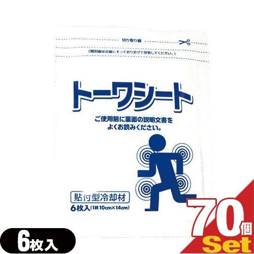 「柔整向け冷却材」東和製薬 トーワシート 14x10cm(6枚入り)x70袋