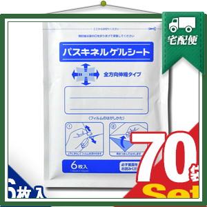 「貼付型冷却材」パスキネルゲルシート 10x14cm(6枚入り)x70袋