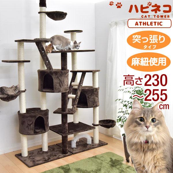 ★20時~6H全品P10倍★【送料無料】 キャットタワー 高さ230~254cm 突っ張り 猫タワー 爪研ぎ 麻紐 ねこ 猫 ネコ キャットタワー つめとぎ ハンモック キャットハウス おしゃれ キャットタワー 猫タワー つっぱり