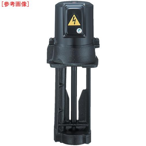 テラル テラル クーラントポンプ(浸水型) VKP-065A