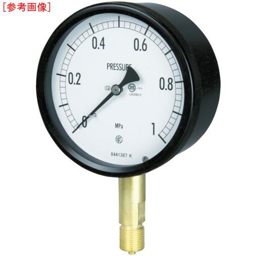 長野計器 長野 密閉形圧力計 BE10-131-6.0MP BE10-131-6.0MP