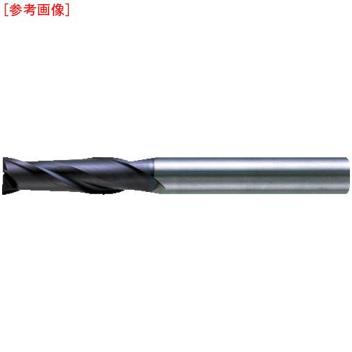 三菱マテリアルツールズ 三菱K 2枚刃エムスターエンドミルJ MS2JSD1200