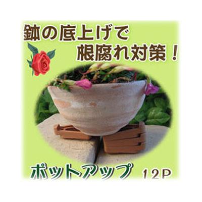 富士パックス販売 ポットアップ12P【80個セット】 h595