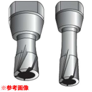 HiKOKI(日立工機) スチールコア(N) 60 T50 0031-6089