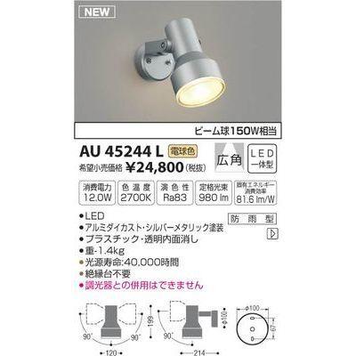 コイズミ アウトドアスポットライト(電球色LED) AU45244L