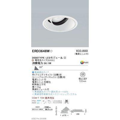 遠藤照明 LEDZ ARCHI series ユニバーサルダウンライト ERD3648W