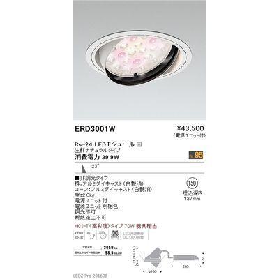 遠藤照明 LEDZ Rs series 生鮮食品用照明(ユニバーサルダウンライト) ERD3001W