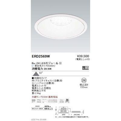 遠藤照明 LEDZ Rs series リプレイスダウンライト ERD2569W