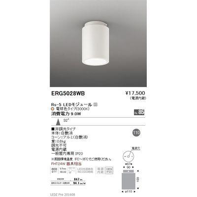 遠藤照明 LEDZ HIGH-BAY series シーリングダウンライト ERG5028WB