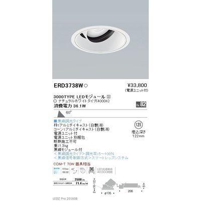 遠藤照明 LEDZ ARCHI series ユニバーサルダウンライト ERD3738W
