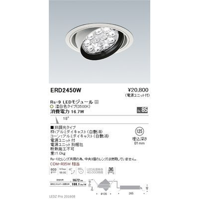 遠藤照明 LEDZ Rs series ユニバーサルダウンライト ERD2450W