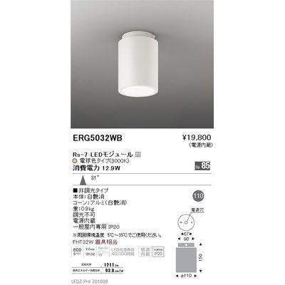 遠藤照明 LEDZ HIGH-BAY series シーリングダウンライト ERG5032WB