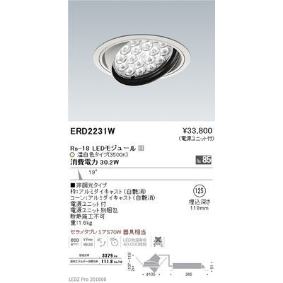 遠藤照明 LEDZ Rs series ユニバーサルダウンライト ERD2231W
