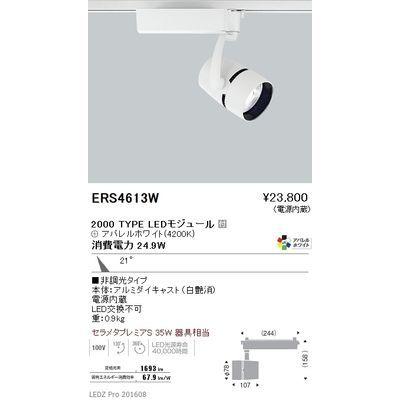 遠藤照明 LEDZ ARCHI series スポットライト ERS4613W