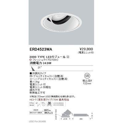 遠藤照明 LEDZ ARCHI series 生鮮食品用照明(ユニバーサルダウンライト) ERD4523WA