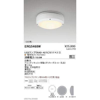 遠藤照明 STYLISH LEDZ series アウトドアブラケットライト/アウトドアシーリングライト ERG5468W