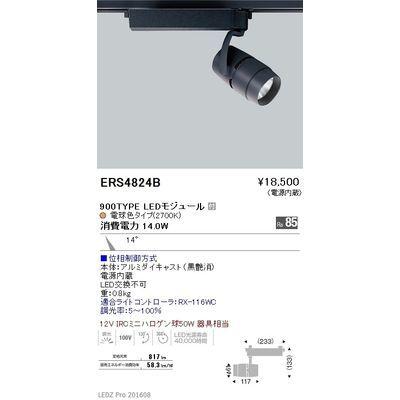 遠藤照明 LEDZ ARCHI series スポットライト ERS4824B