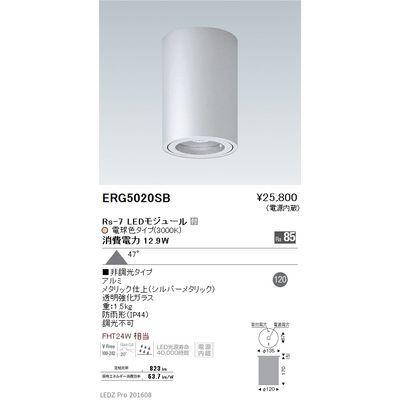 遠藤照明 STYLISH LEDZ series 軒下用シーリングダウンライト ERG5020SB