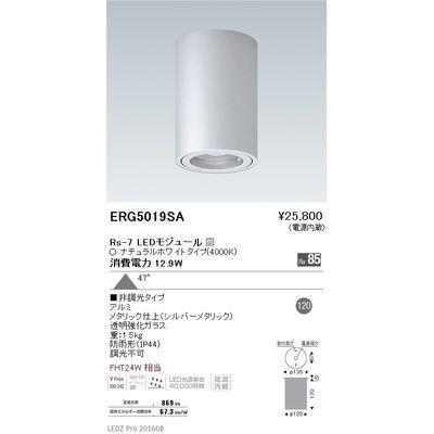 遠藤照明 STYLISH LEDZ series 軒下用シーリングダウンライト ERG5019SA