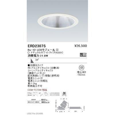 遠藤照明 LEDZ Rs series グレアレス ユニバーサルダウンライト ERD2307S