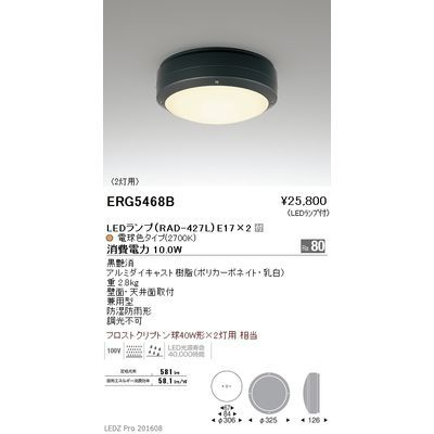遠藤照明 STYLISH LEDZ series アウトドアブラケットライト/アウトドアシーリングライト ERG5468B