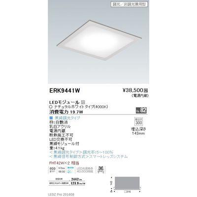 遠藤照明 LEDZ Mid Power series フラットベースミニ ERK9441W