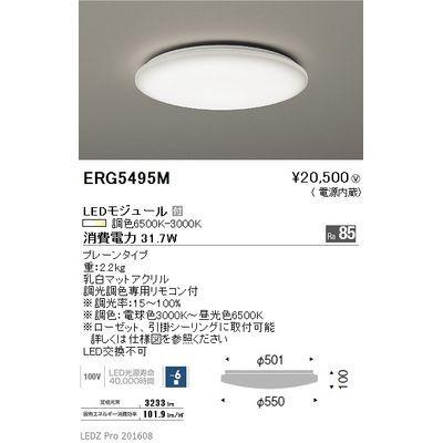 遠藤照明 LEDZ 調光調色シリーズ 調光調色シーリングライト ERG5495M