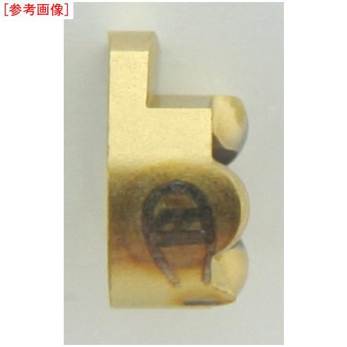 イスカルジャパン 【10個セット】イスカル D カムグルーブ/チップ IC528 GIQR111.500.05