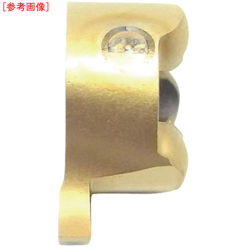 イスカルジャパン 【10個セット】イスカル D チップ IC528 GIQR82.000.10