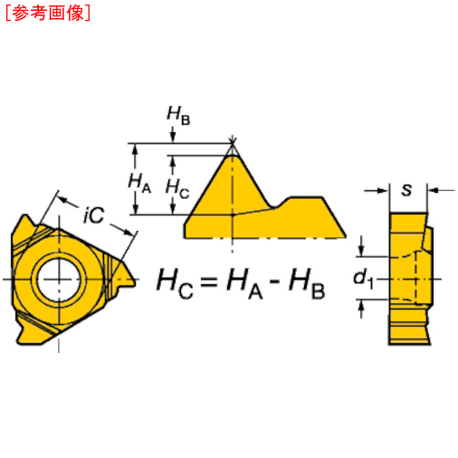 サンドビック 【10個セット】サンドビック T-Max U-ロック ねじ切りチップ 1020 L166.0L11VM0100