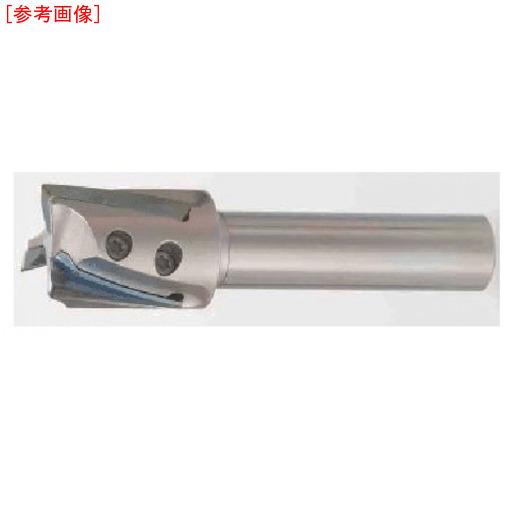 タンガロイ タンガロイ 柄付TACミル EPH18R016M10.03