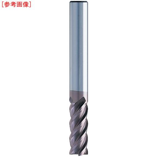 日進工具 NS 無限コーティング 4枚刃EM MSE445 Φ10 MSE44510