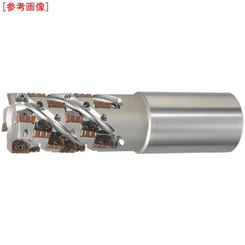 日立ツール 日立ツール アルファ ラフィングEM AME1250S42-73-4NT AME1250S42734NT