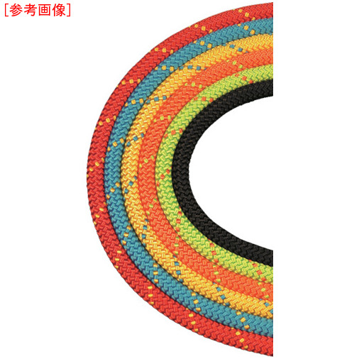 BlueWater社 BlueWater セイフライン 9.5φ×91m  赤/黄 534630RDYE