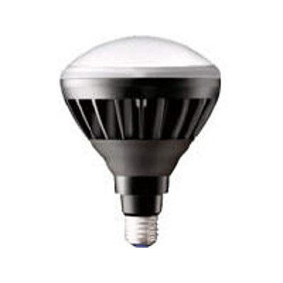 岩崎電気 岩崎 LEDアイランプ14Wタイプ(本体:黒色 光色:昼白色) LDR14NHB850