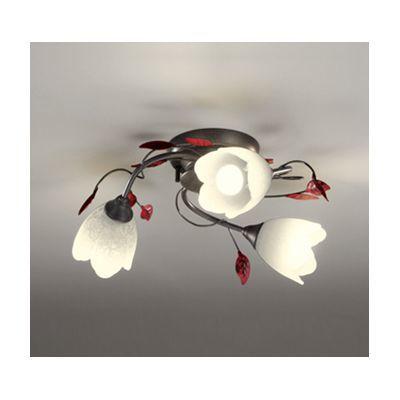 ODELIC LEDシャンデリア OC257027PC