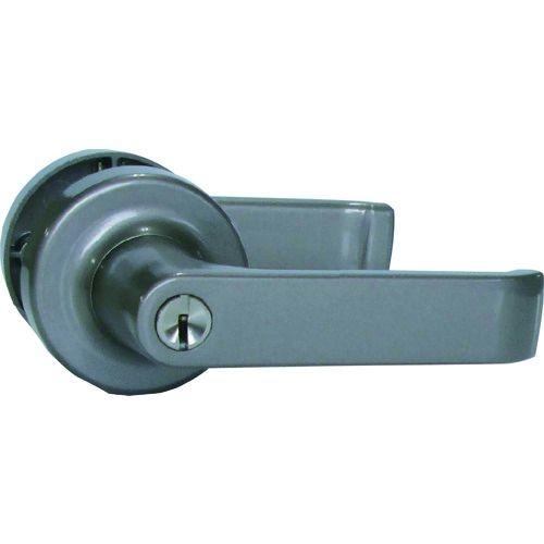 トラスコ中山 AGENT LP-200 取替用レバーハンドル 2スピンドル型 鍵付用 tr-1319509