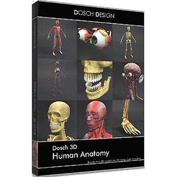 DOSCH DESIGN DOSCH 3D: Human Anatomy D3D-HUAN