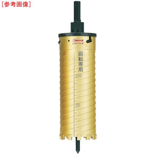 ロブテックス エビ ダイヤモンドコアドリル 40mm SDSシャンク KD40S
