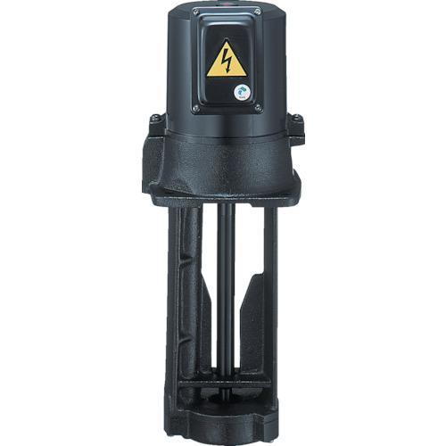 テラル テラル クーラントポンプ(浸水型) VKP-045A
